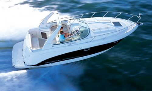 Chaparral 250 Signature 2009